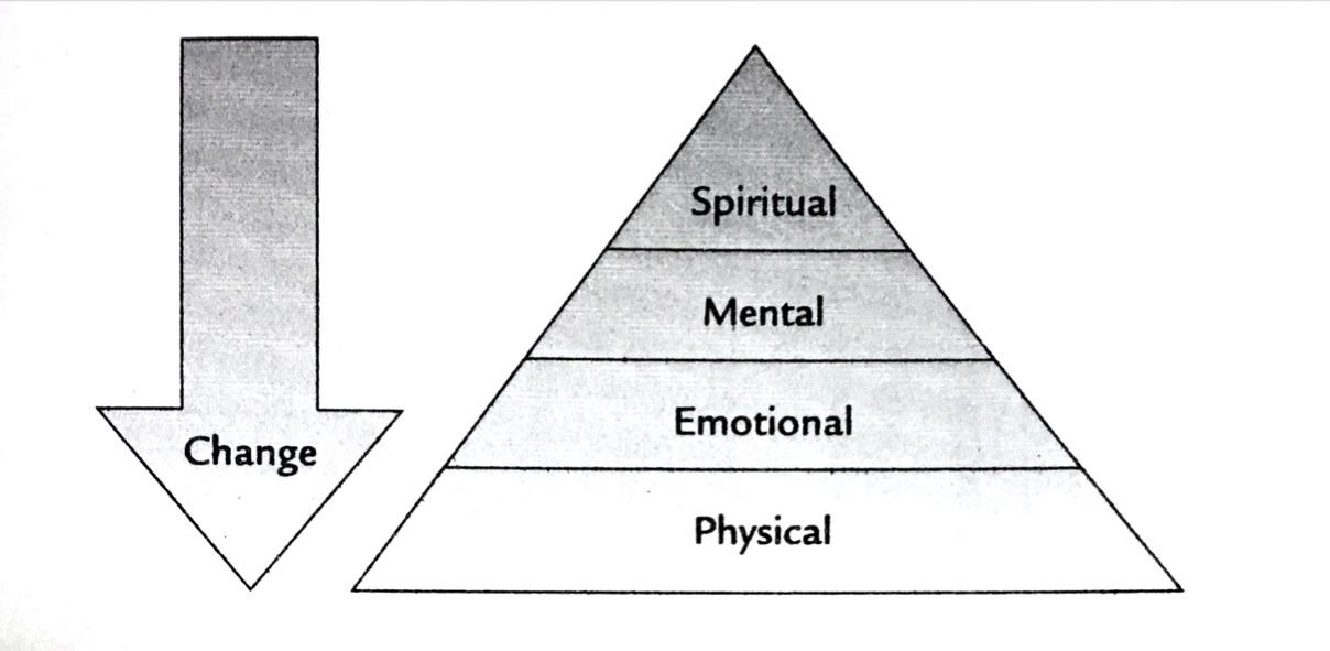 Engagement Pyramid